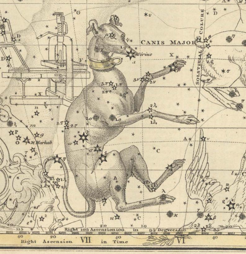 Canis Major - Jamieson - 1822